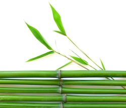 Bamboo brings peaceful and wise energy into a building