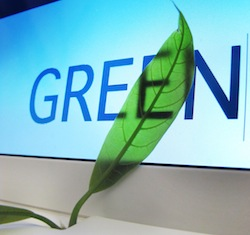 Going green: Is there more to sustainability than just being green?